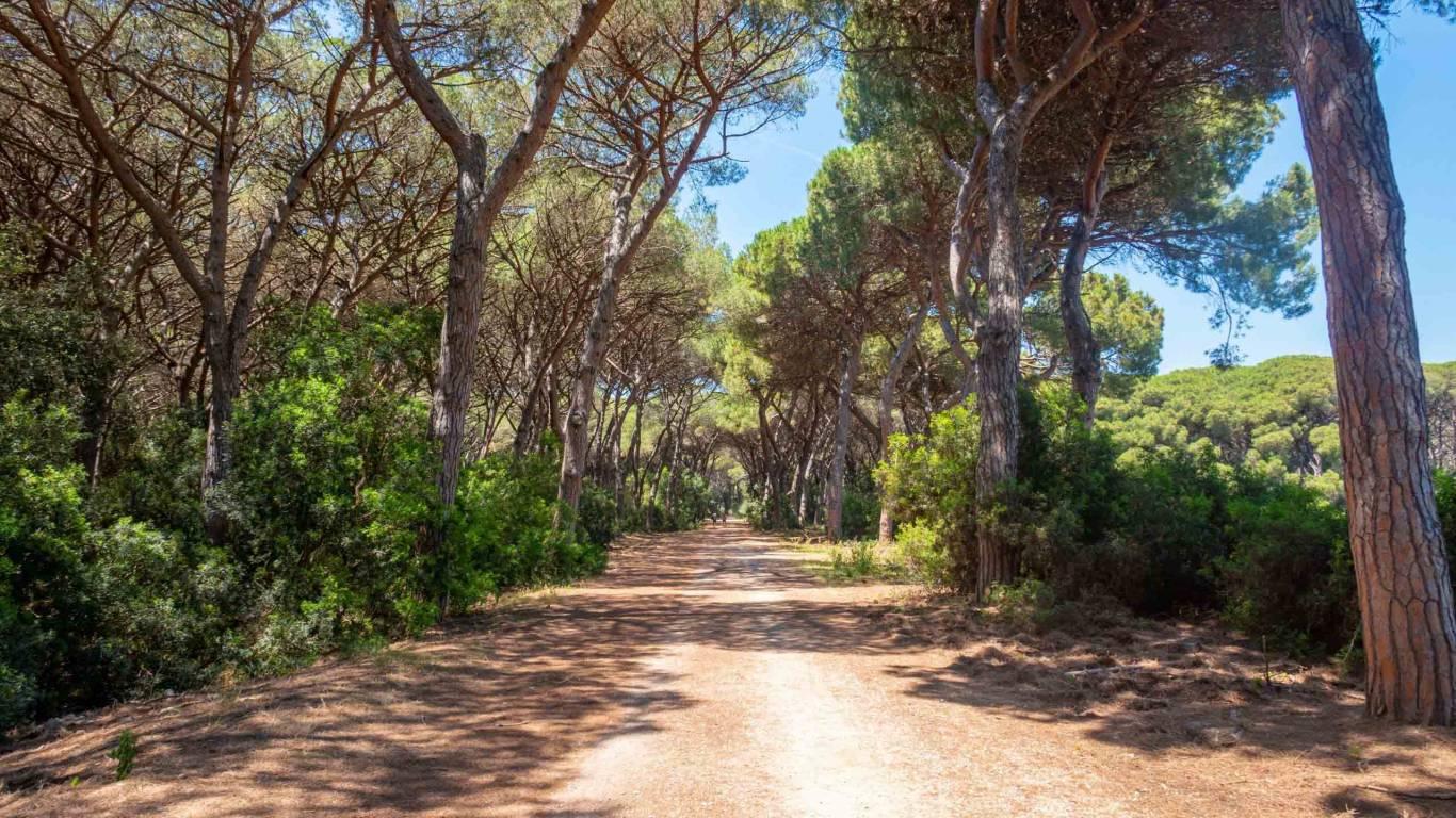 Hotel-Residence-Valle-del-Buttero-Capalbio-esperienze-natura-feniglia-2